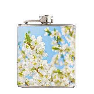 桜の白の開花のフラスコ フラスク