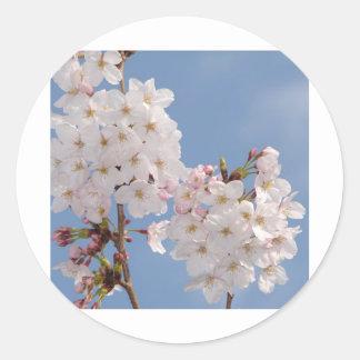 桜の花の手製プロダクト ラウンドシール