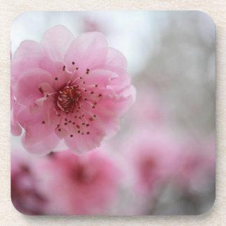 桜の飲み物用コースター コースター