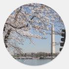 桜のWashington D.C. ラウンドシール