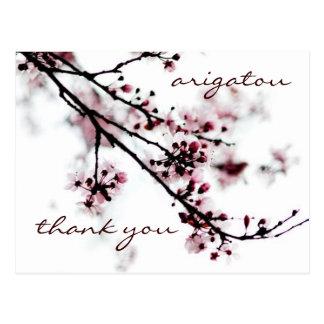 桜は感謝していしています