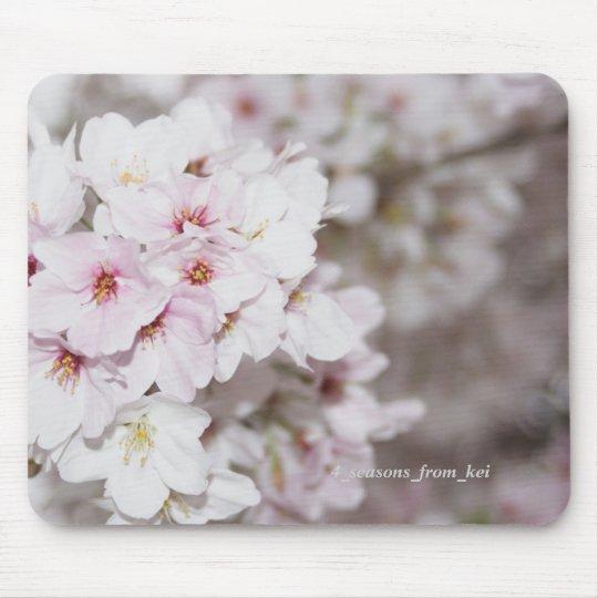 桜満開 マウスパッド