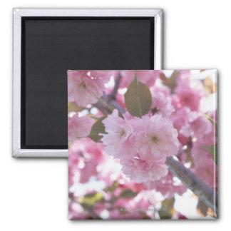 桜4 マグネット