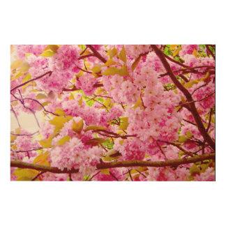 桜 ウッドウォールアート