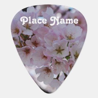 桜 ギターピック