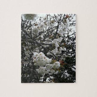 桜 ジグソーパズル