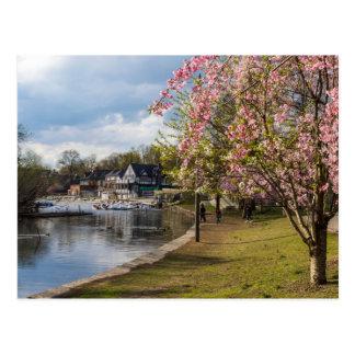 桜、ボートハウスの列、フィラデルヒィア ポストカード