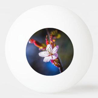 桜-日本のなさくらんぼの花 卓球ボール