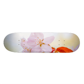 桜-日本のな桜 オリジナルスケートボード