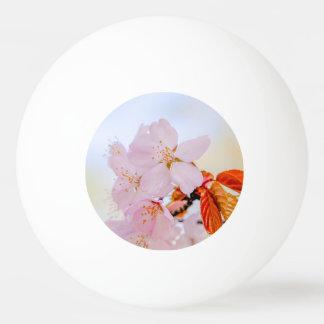 桜-日本のな桜 卓球ボール