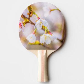 桜-日本のな桜 卓球ラケット