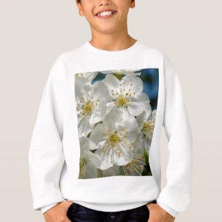 桜、春 スウェットシャツ
