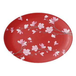 桜-赤 磁器大皿