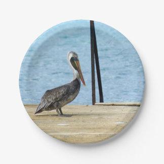 """桟橋のペリカン、クラサオ島カリブの写真7"""" ペーパープレート"""