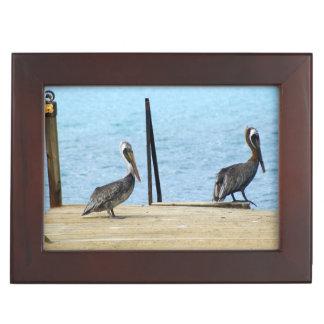 桟橋の2羽のペリカン、クラサオ島カリブの写真 ジュエリーボックス