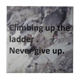 梯子に上ること タイル