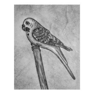 棒のとまり木に坐るインコの鉛筆のスケッチ レターヘッド