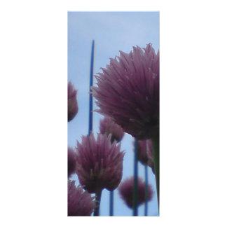 棚カード-アサツキの    イメージ1 ラックカード
