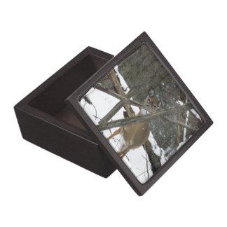 """森のシカ3""""正方形の宝石箱 ギフトボックス"""