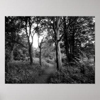 森のビュート公園、カーディフ ポスター