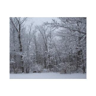 森の冬の歩行 キャンバスプリント
