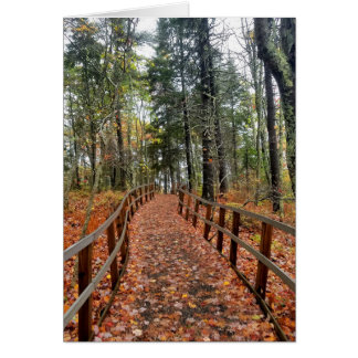 森の秋道 カード