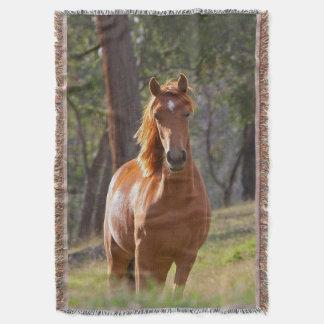 森の馬 スローブランケット