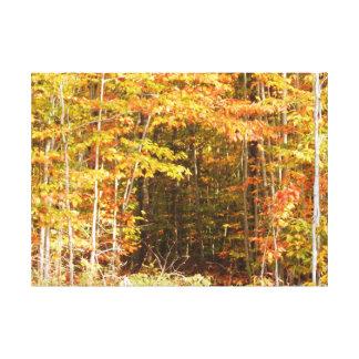 森のAdirondacks山の道 キャンバスプリント