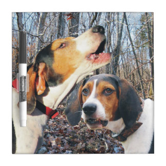 森のTreeingの歩行者のCoonhounds ホワイトボード