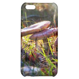 森林のはえテングタケ属 iPhone5C カバー