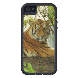 森林のトラ iPhone SE/5/5s ケース