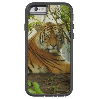 森林のトラ TOUGH XTREME iPhone 6 ケース