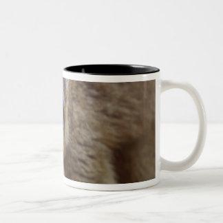 森林のブラウンのlemur (Eulemurのfulvus) ツートーンマグカップ