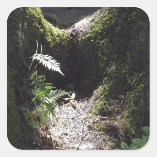 森林のライト 正方形シールステッカー