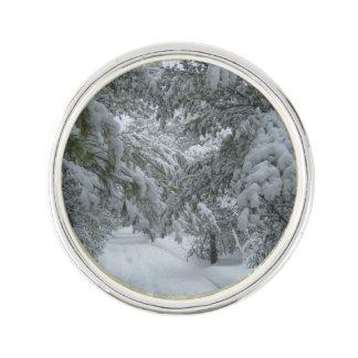 森林の冬 ラペルピン