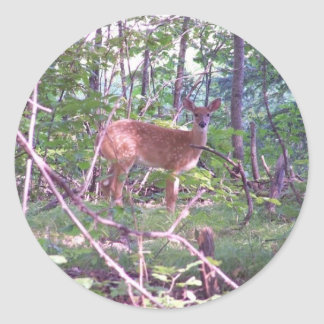 森林の子鹿 ラウンドシール