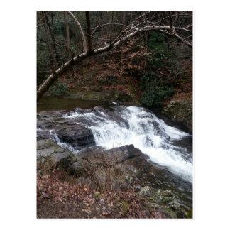 森林の山の流れ ポストカード