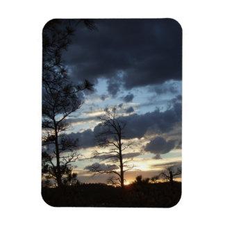 森林の日没 マグネット