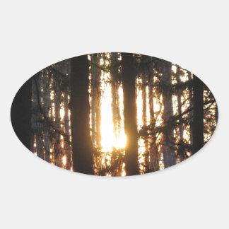 森林の日没 楕円形シール