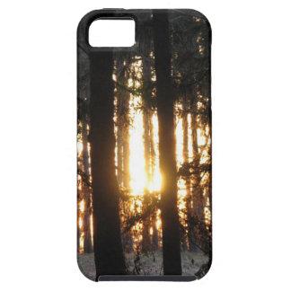 森林の日没 iPhone SE/5/5s ケース