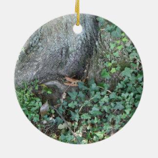 森林の木の幹そしてキヅタ 陶器製丸型オーナメント