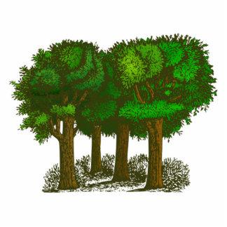 森林の木 写真彫刻(台付き)