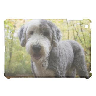 森林の英国の牧羊犬の子犬 iPad MINIケース