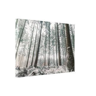 森林の雪で覆われる木 キャンバスプリント