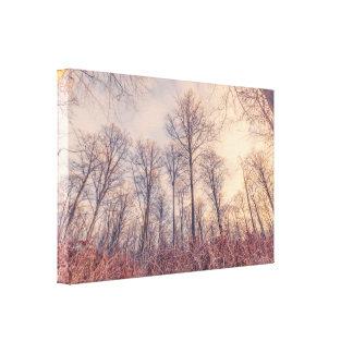 森林のBarenakedの木 キャンバスプリント