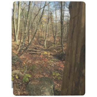 森林のiPadの落下時間 iPadスマートカバー