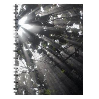 森林のSunrays ノートブック