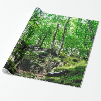 森林はウェールズNeathの谷の歩くを引きずります ラッピングペーパー