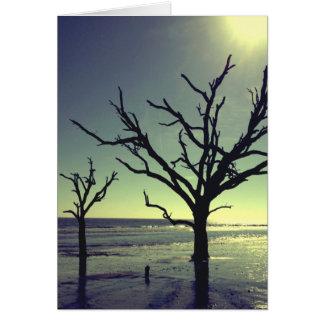 森林は捨てられたビーチNotecardに会います カード
