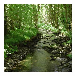 森林を貫流する川 写真彫刻(台付き)